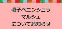 【お知らせ】磯子ペニンシュラマルシェについて