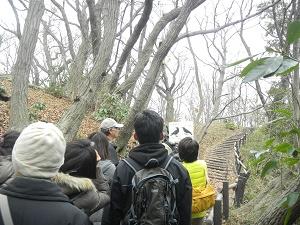 【開催レポート】久良岐自然公園自然観察会