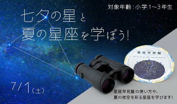 七夕の星と夏の星座を学ぼう!