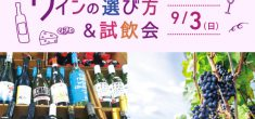 【受付終了】お気に入りの一本をみつけよう!ワインの選び方&試飲会