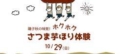 【受付終了】磯子味覚の秋!ホクホクさつま芋ほり体験