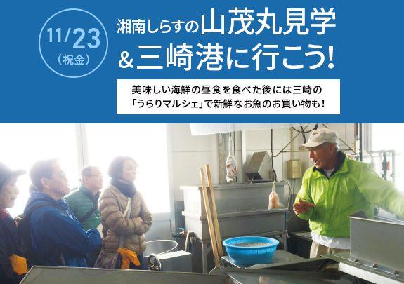 【受付中】湘南しらすの山茂丸見学&三崎港に行こう!