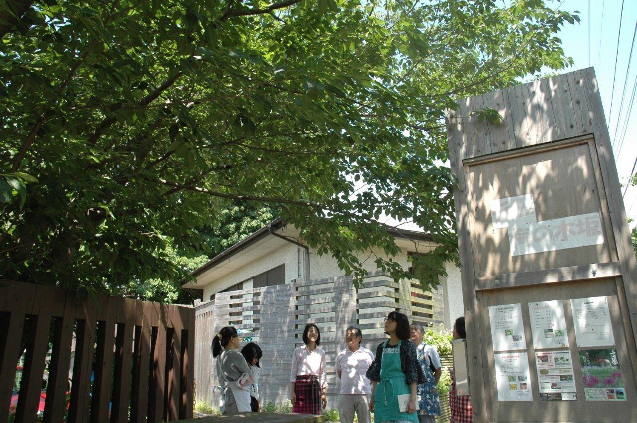 【開催レポート】杉田梅の木坂で楽しむ梅酒・梅ジュースづくり&梅料理ランチ会