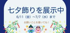 【季節飾り】七夕飾りの展示がはじまりました!