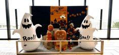 【季節飾り】ハロウィンの展示がはじまりました!